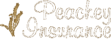 Peachey Insurance Agency Inc